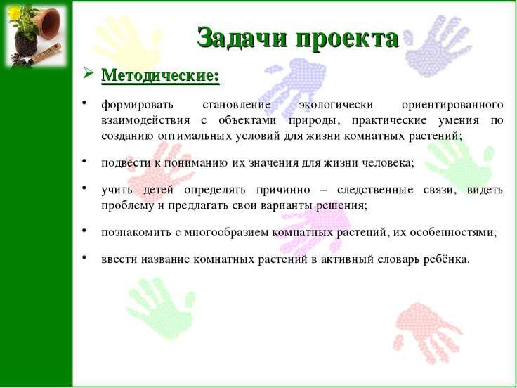 Задачи проекта Методические: формировать становление экологически ориентирова...