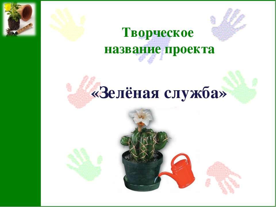 Творческое название проекта «Зелёная служба»