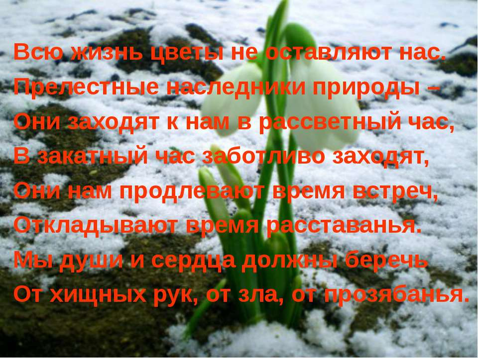 Всю жизнь цветы не оставляют нас. Прелестные наследники природы – Они заходят...