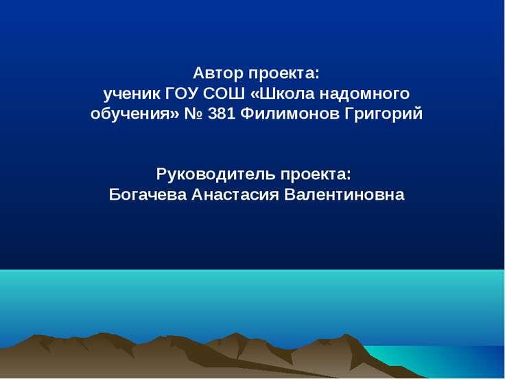 Автор проекта: ученик ГОУ СОШ «Школа надомного обучения» № 381 Филимонов Григ...