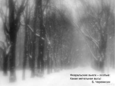 Февральские вьюги – особые: Какая метельная высь! Б. Черемисин