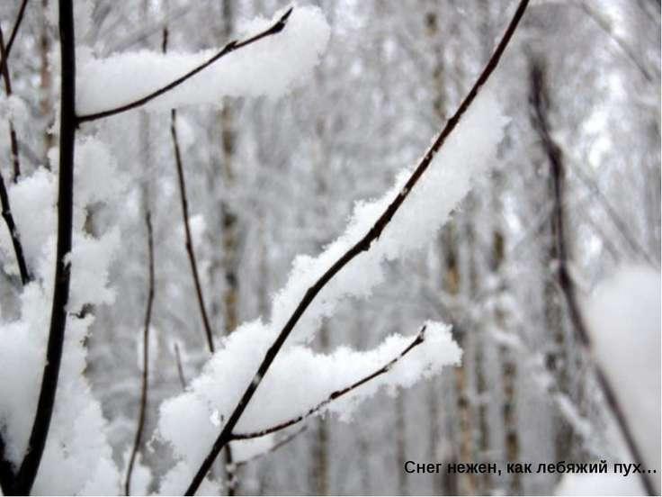 Снег нежен, как лебяжий пух…