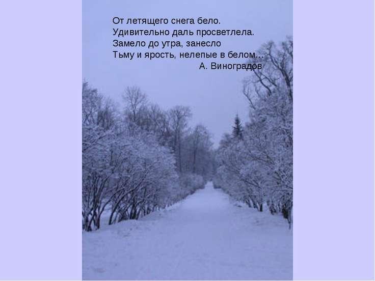От летящего снега бело. Удивительно даль просветлела. Замело до утра, занесло...