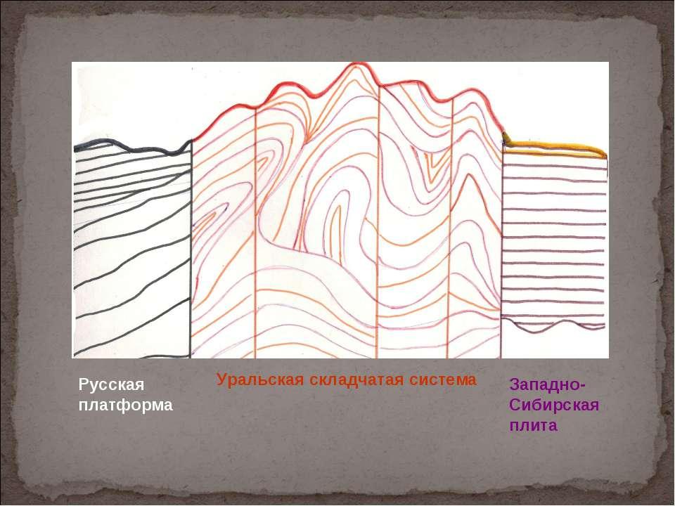Русская платформа Уральская складчатая система Западно-Сибирская плита
