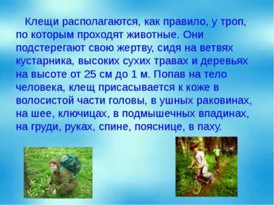 Клещи располагаются, как правило, у троп, по которым проходят животные. Они п...