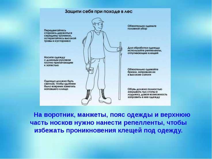 На воротник, манжеты, пояс одежды и верхнюю часть носков нужно нанести репелл...