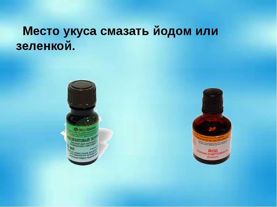Место укуса смазать йодом или зеленкой.