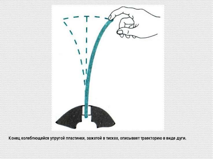 Конец колеблющейся упругой пластинки, зажатой в тисках, описывает траекторию ...
