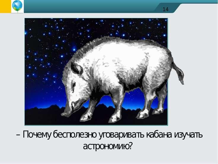 – Почему бесполезно уговаривать кабана изучать астрономию?