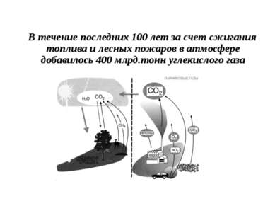 В течение последних 100 лет за счет сжигания топлива и лесных пожаров в атмос...