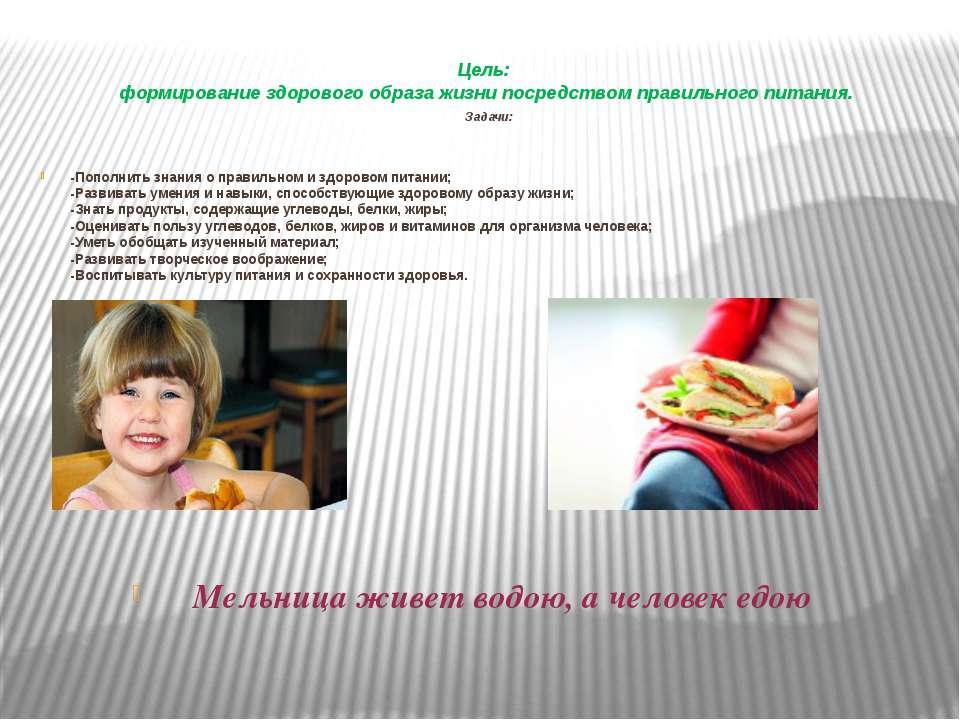 Цель: формирование здорового образа жизни посредством правильного питания. За...