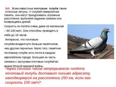 №6. Всем известныепочтовые голубитакже отличные летуны. Уголубейневероятн...