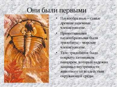 Они были первыми Паукообразные – самые древние наземные членистоногие. Примит...