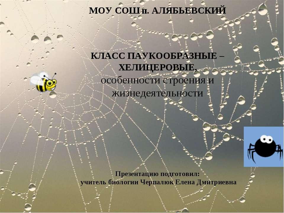 МОУ СОШ п. АЛЯБЬЕВСКИЙ КЛАСС ПАУКООБРАЗНЫЕ – ХЕЛИЦЕРОВЫЕ, особенности строени...