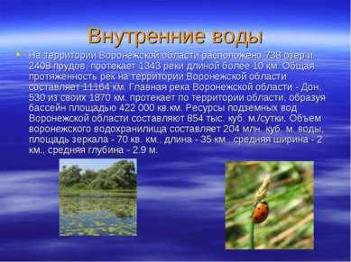 Внутренние воды На территории Воронежской области расположено 738 озер и 2408...