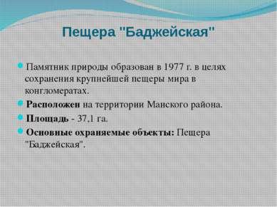 """Пещера """"Баджейская"""" Памятник природы образован в 1977 г. в целях сохранения к..."""