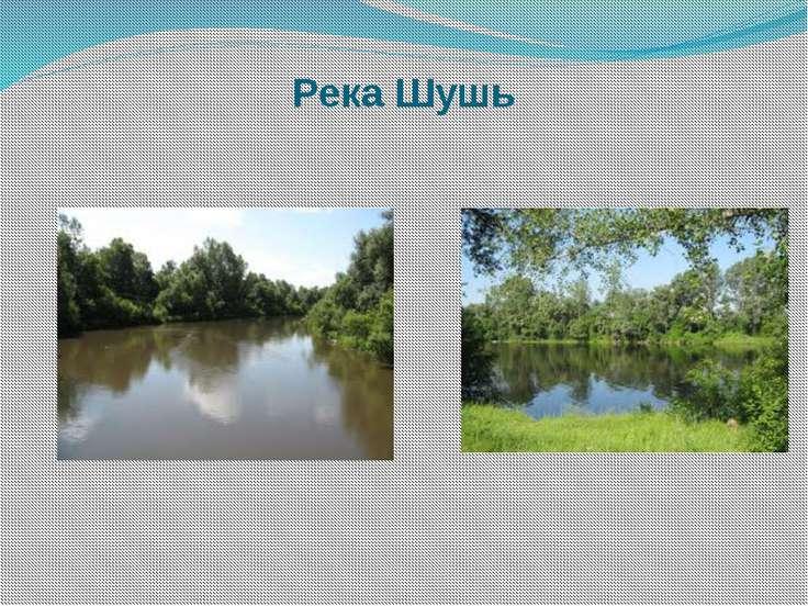 Река Шушь