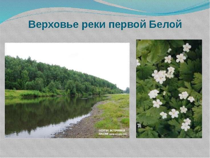 Верховье реки первой Белой