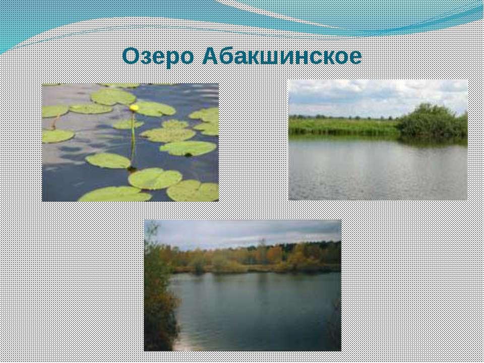 Озеро Абакшинское