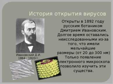История открытия вирусов Открыты в 1892 году русским ботаником Дмитрием Ивано...