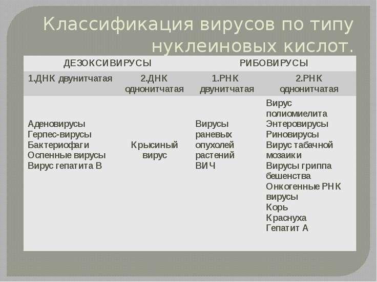 Классификация вирусов по типу нуклеиновых кислот. ДЕЗОКСИВИРУСЫ РИБОВИРУСЫ 1....