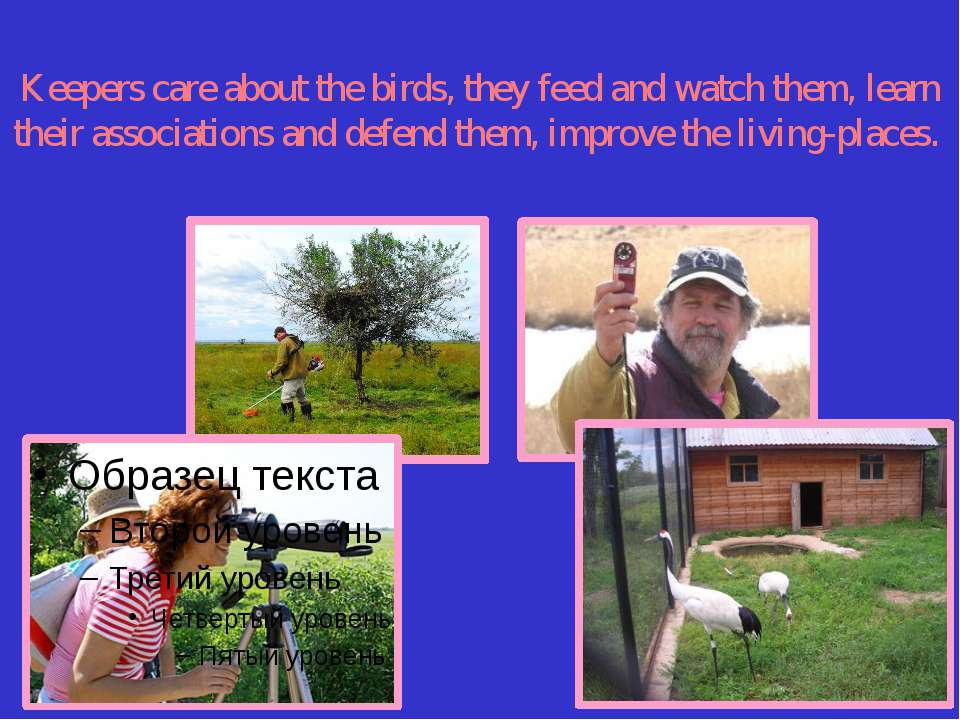 Keepers care about the birds, they feed and watch them, learn their associati...