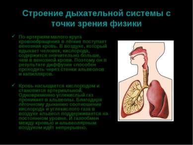 Строение дыхательной системы с точки зрения физики По артериям малого круга к...