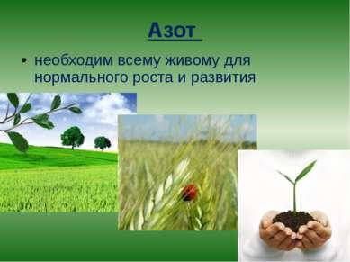 Азот необходим всему живому для нормального роста и развития