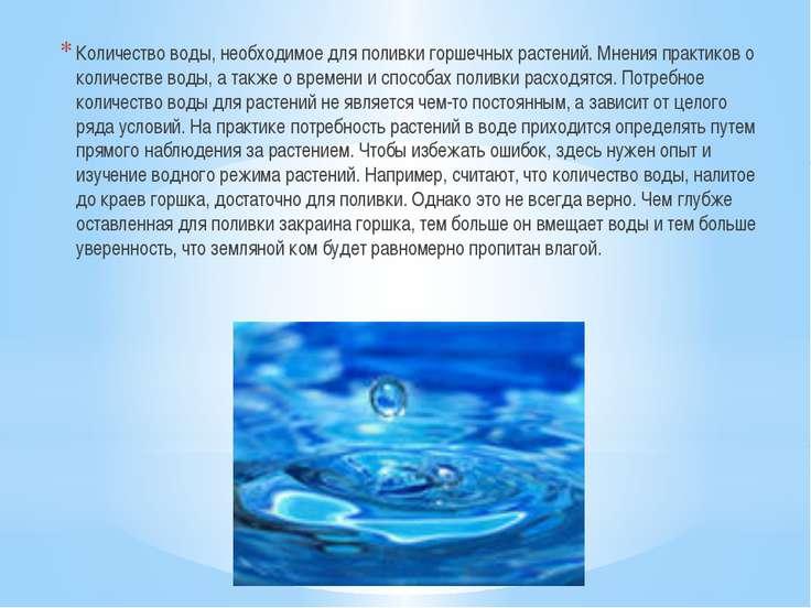 Количество воды, необходимое для поливки горшечных растений. Мнения практиков...