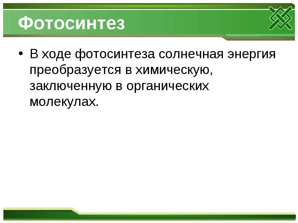 Фотосинтез В ходе фотосинтеза солнечная энергия преобразуется в химическую, з...