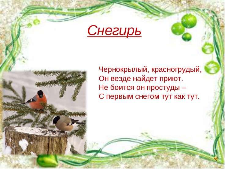 Снегирь Чернокрылый, красногрудый, Он везде найдет приют. Не боится он просту...