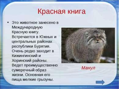 Красная книга Это животное занесено в Международную Красную книгу. Встречаетс...