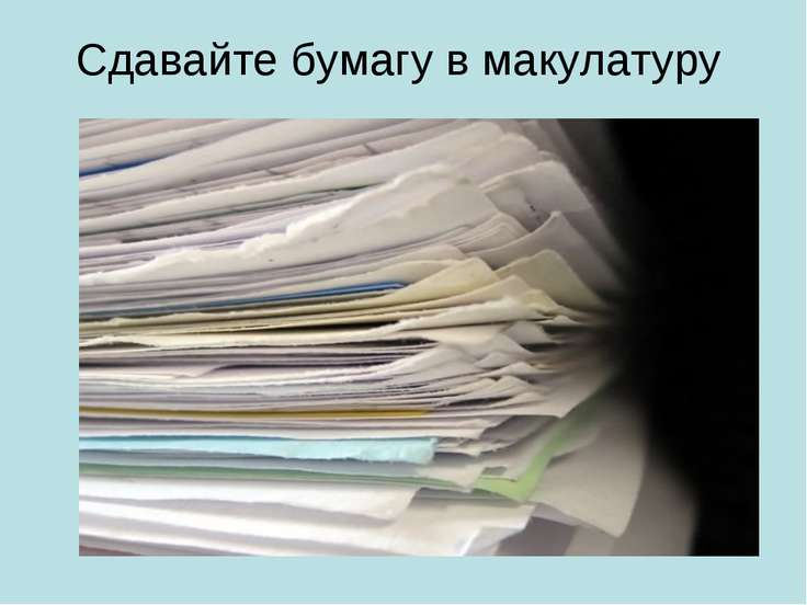 Сдавайте бумагу в макулатуру