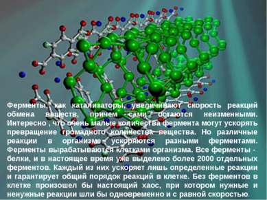 Ферменты, как катализаторы, увеличивают скорость реакций обмена веществ, прич...