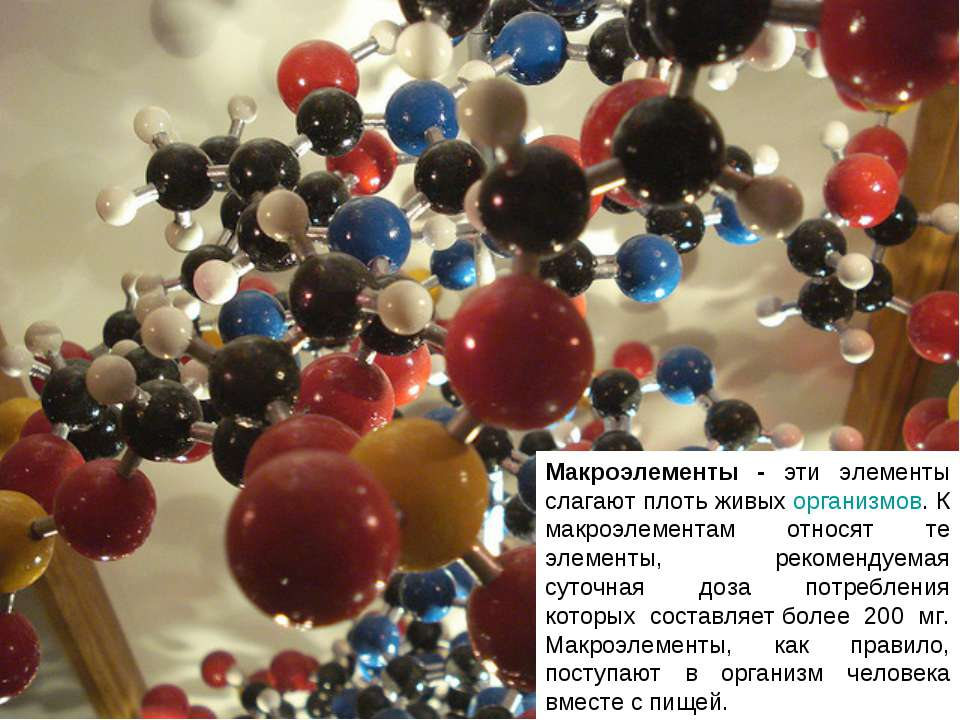 Макроэлементы - эти элементы слагают плоть живыхорганизмов. К макроэлементам...