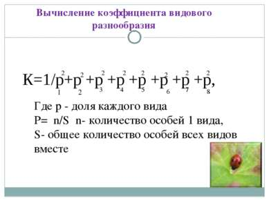 К=1/р+р +р +р +р +р +р +р, Вычисление коэффициента видового разнообразия Где ...