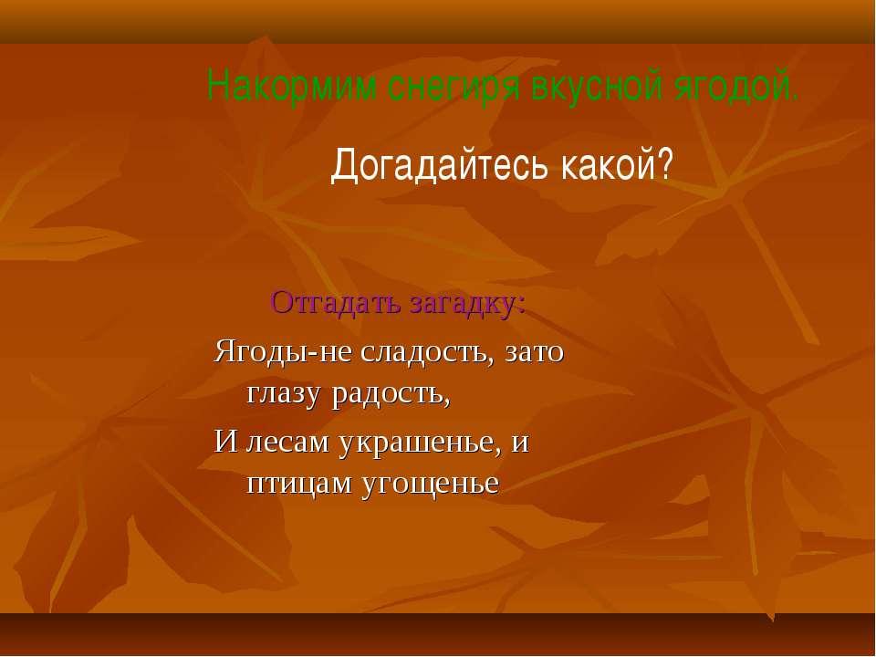 Отгадать загадку: Ягоды-не сладость, зато глазу радость, И лесам украшенье, и...