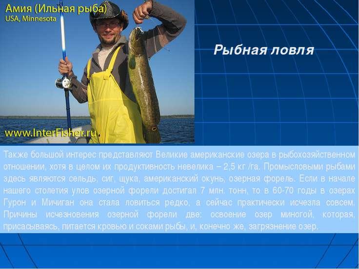 Также большой интерес представляют Великие американские озера в рыбохозяйстве...