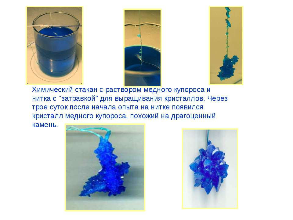 """Химический стакан с раствором медного купороса и нитка с """"затравкой"""" для выра..."""