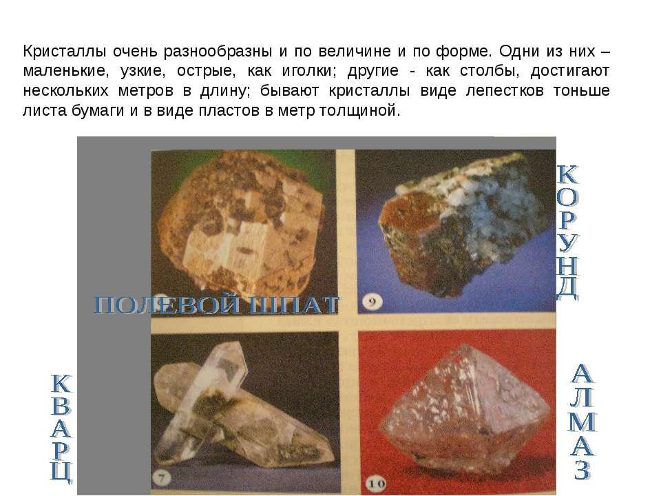 Кристаллы очень разнообразны и по величине и по форме. Одни из них – маленьки...