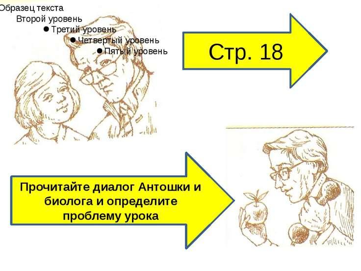 Стр. 18 Прочитайте диалог Антошки и биолога и определите проблему урока
