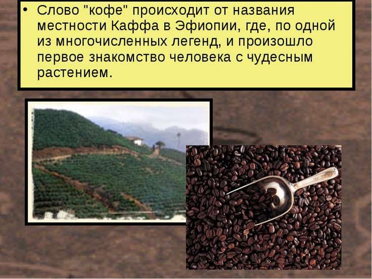"""Слово """"кофе"""" происходит от названия местности Каффа в Эфиопии, где, по одной ..."""