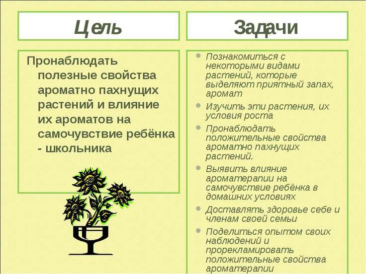 Цель Задачи Пронаблюдать полезные свойства ароматно пахнущих растений и влиян...