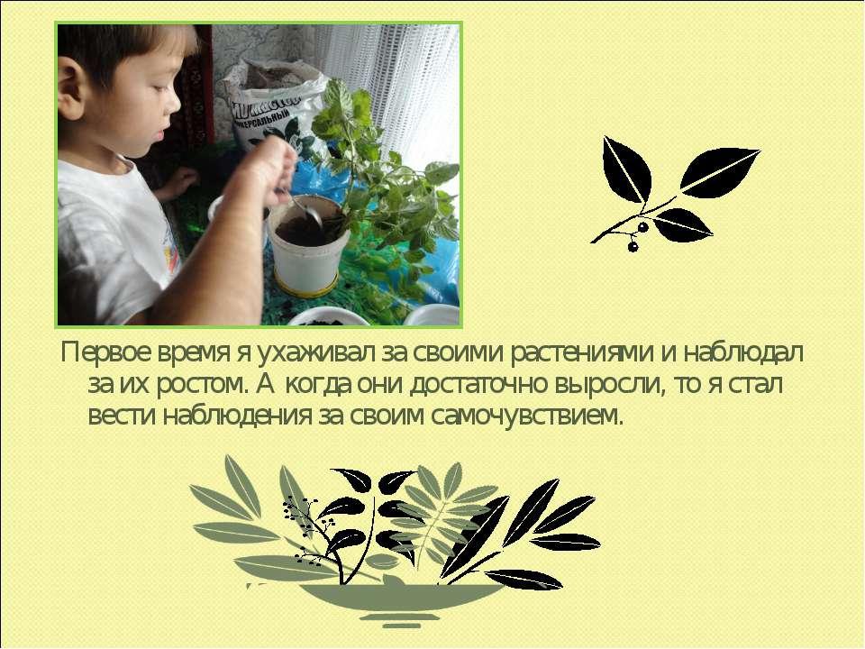 Первое время я ухаживал за своими растениями и наблюдал за их ростом. А когда...
