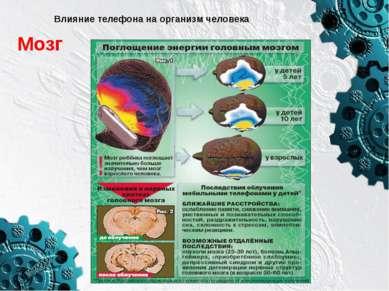 Влияние телефона на организм человека Мозг