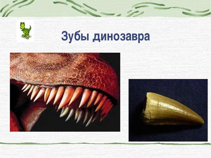 Зубы динозавра