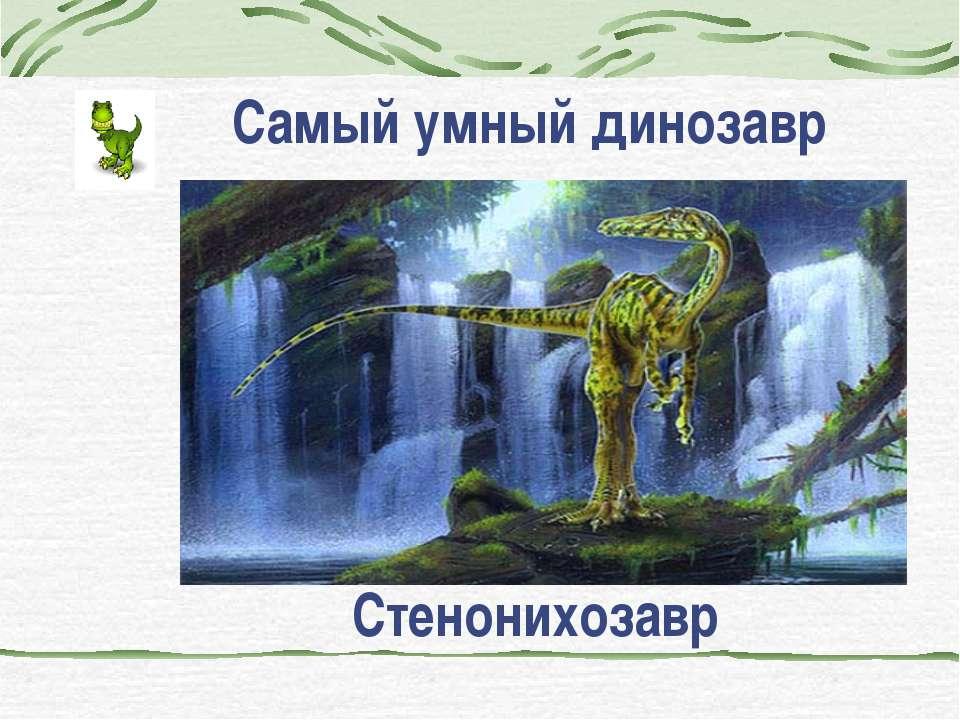 Самый умный динозавр Стенонихозавр